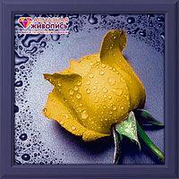 "Картина стразами на холсте ""Желтая роза"", 22*24см"