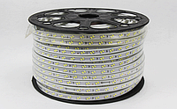 Светодиодная лента  5630/120 220v IP67 6000К,3000К