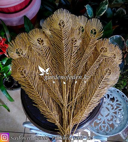 """Новогодний декор """"Павлиньи перья украшенные золотым блеском""""., фото 2"""