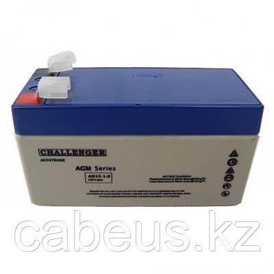 Аккумулятор Challenger AS12-20