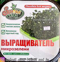 """""""Здоровья Клад"""" - Выращиватель микрозелени."""