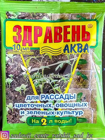 """Удобрение """"Здравень Аква"""" для рассады, 10 мл, фото 2"""