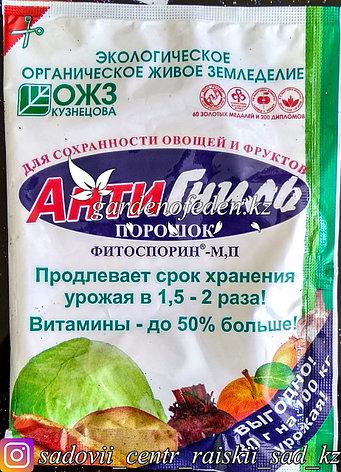 Препарат АнтиГниль Фитоспорин, защищающий растения при хранении урожая, 30 г, фото 2