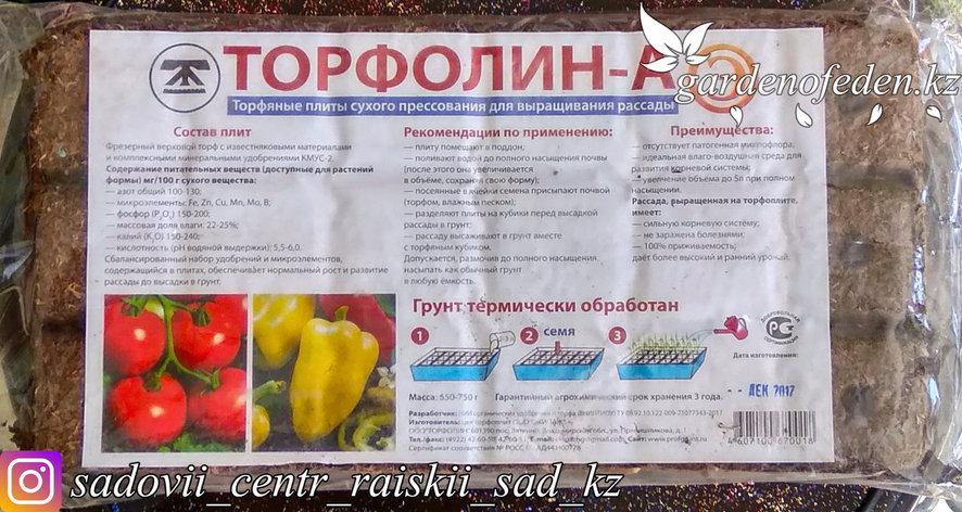 Субстрат торфяной, 18 ячеек, «Торфолин-А», фото 2