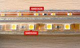 Лента SMD 5050, 220v в пвх оболочке. Цвет: белый (4500К, 3000К) синий, желтый, зеленый, красный , фото 2