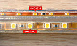 Ленты светодиодные 220 в. В ПВХ оболочке  LED лента SMD 5050. 9 цветов, фото 2