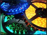 Светодиодная лента SMD 5050, 12v герметичная 30 д/м Цвет: белый,зеленый,красный,синий,желтый, фото 8