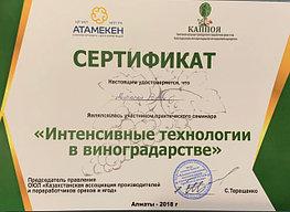 """Сертификат о прохождении теоретического курса """"Интенсивные технологии в виноградарстве"""""""