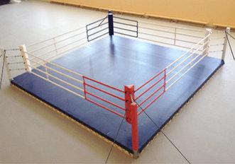 Ринг боксерский  4 х 4 м (боевая зона) на растяжках