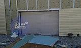 Гаражные ворота Doorhan, фото 2