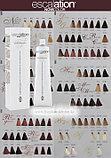 7/03 Краска для волос Escalation NOW (исскуственный интеллект), фото 2