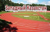 Полиуретановое покрытие спортивных площадок, толщина 14мм