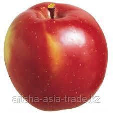 Саженцы яблони м9 Fuji