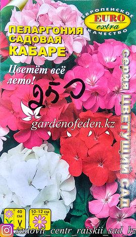 "Семена пеларгонии садовой - Euro Extra ""Кабаре"", фото 2"
