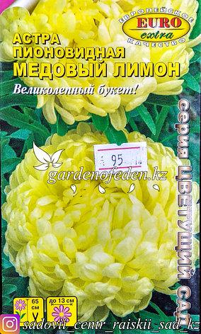"""Семена астры пионовидной - Euro Extra """"Медовый лимон"""", фото 2"""