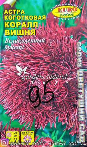 "Семена астры коготковой - Euro Extra ""Коралл Вишня"", фото 2"