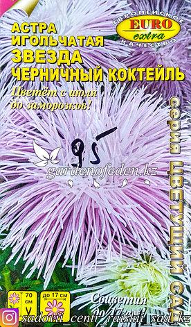 """Семена астры игольчатой - Euro Extra """"Черничный коктейль"""", фото 2"""