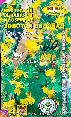 """Семена настурции вьющейся - Euro Extra """"Золотой водопад"""", фото 2"""