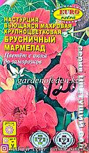"""Семена настурции вьющейся - Euro Extra """"Брусничный мармелад"""""""