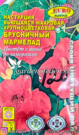 """Семена настурции вьющейся - Euro Extra """"Брусничный мармелад"""", фото 2"""