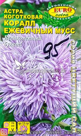 """Семена астры коготковой - Euro Extra """"Ежевичный мусс"""", фото 2"""