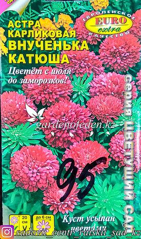 """Семена астры карликовой - Euro Extra """"Внученька Катюша"""", фото 2"""
