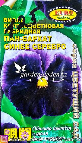 "Семена виолы крупноцветковой - Euro Extra ""Пан-Бархат Синее серебро"", фото 2"