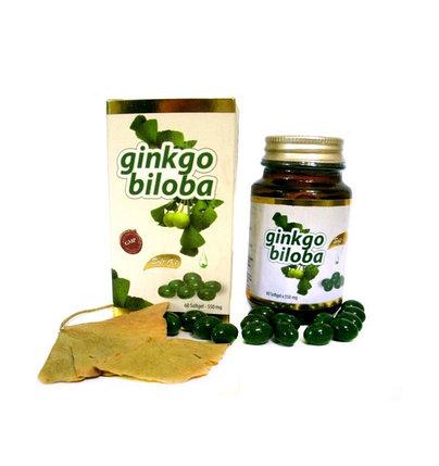 Гинкго Билоба Sah? Sifa Ginkgo Biloba Soft Gel (60 г), фото 2