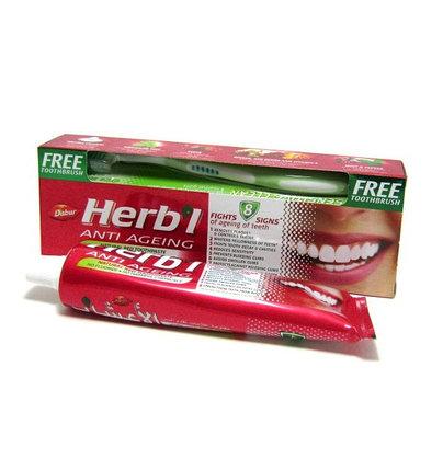 Зубная паста (антивозрастная) Dabur Herbal Anti Ageing + зубная щетка, фото 2