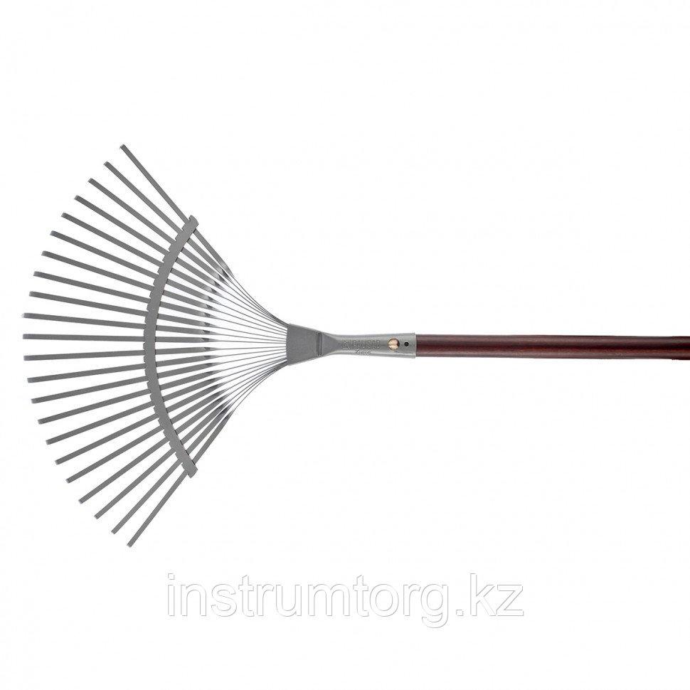 Грабли веерные стальные, 420х1550 мм, 22 плоских зуба, лакированный черенок, LUXE// Palisad