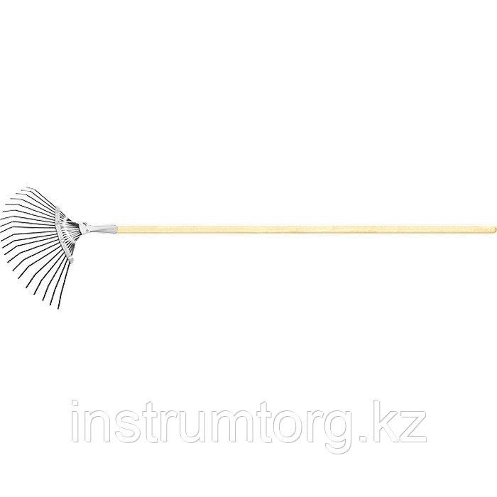 Грабли веерные стальные, 385х1500 мм, 20 плоских зубьев, деревянный черенок, Россия// Сибртех