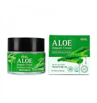 Увлажняющий крем для лица с алоэ вера Ekel Aloe Ampule Cream (70 мл), фото 2