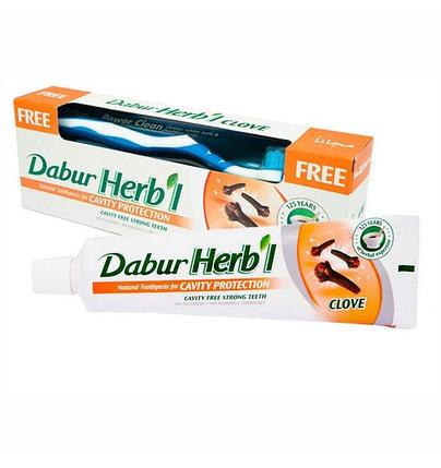 Зубная паста от кариеса Dabur Herbal Clove (гвоздика) + зубная щетка, фото 2
