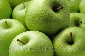 Саженцы яблони м9 Granny Smith