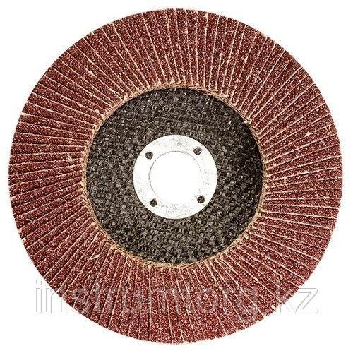 Круг лепестковый торцевой КЛТ-1, зернистость Р60(25Н), 115х22мм, (БАЗ)//Россия