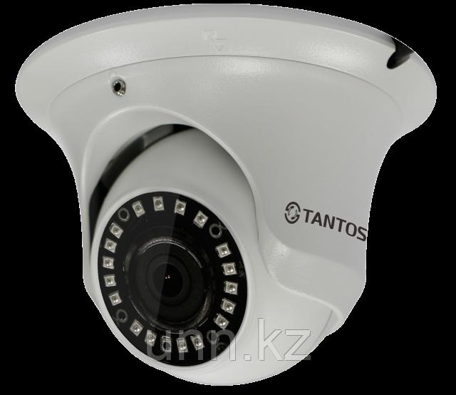 TSi-Ee25FP (3.6) 2Mp IP видеокамера Tantos