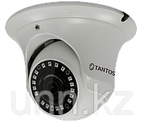 TSi-Ee25FP (3.6) 2Mp IP видеокамера Tantos