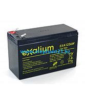 Аккумуляторы MORTARA для ЭКГ ELI 350