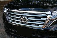 Решетка в силе Lexus на Prado 155 2014