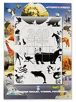 240 Картинок для обучения письму, чтению и рисованию