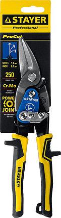 STAYER Ножницы по металлу HERCULES, правые, Cr-Mo, 250 мм, серия Professional, фото 2