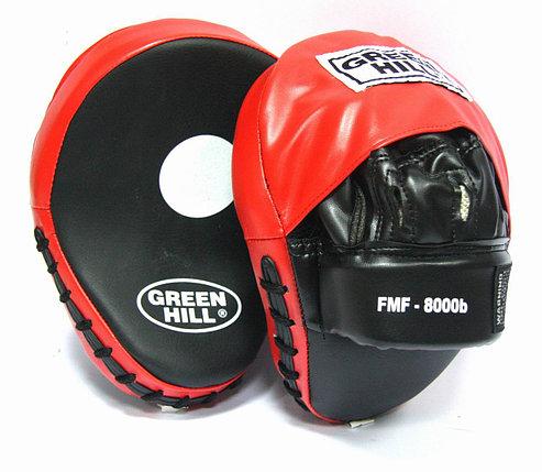 Боксерские лапы, фото 2