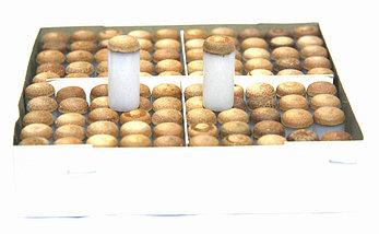 Колпачки на бильярдный кий, фото 3