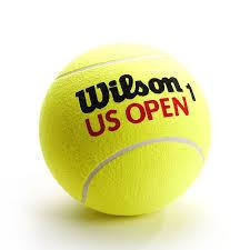 Мяч для большого тенниса Wilson