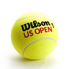 Мяч для большого тенниса Wilson, фото 2
