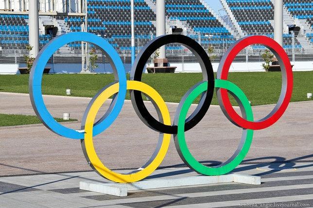 Олимпийский знак кольца, фото 2