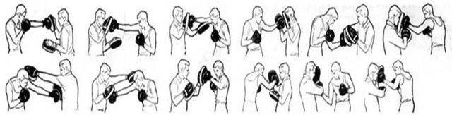 Лапы для бокса Everlast, фото 3