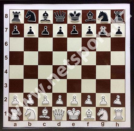 Доска шахматная демонстрационная металлическая с фигурами, фото 2