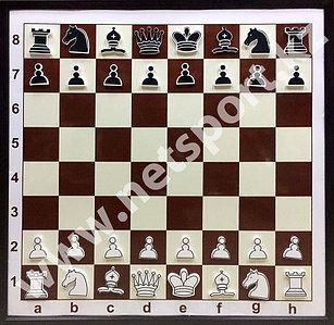 Доска шахматная демонстрационная металлическая с фигурами