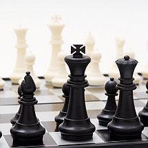 Шахматы 3в 1 (34см х 34см) магнитный, фото 3